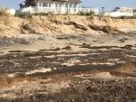 Gabriel Milne 11-01-17 1 Surf Drive Beach Erosion IMG_6342