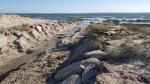 Rebecca Bevilacqua Beach Erosion 10-31-17 Mill Rd 1 150426RB 10-31-17 Fresh River 145953
