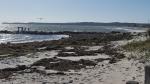 Rebecca Bevilacqua Surf Drive Beach Erosion 10-31-17 Kiddie 144559