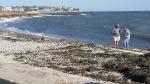 Rebecca Bevilacqua Surf Drive Beach Erosion 10-31-17 Shore 144641