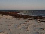 Terry Saunders Surf Drive Beach Erosion 10-31-17 604 pm IMG_2180