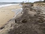 Terry Saunders Surf Drive Beach 11-05-17 Erosion3 IMG_0723