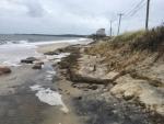 Terry Saunders Surf Drive Beach 11-05-17 Erosion4 IMG_0725
